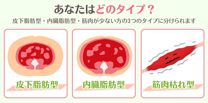所沢市の新所沢併設の、しんとことこ美容整体院のあなたはどのタイプ?皮下脂肪型・内臓脂肪型・筋肉の少ない方の図